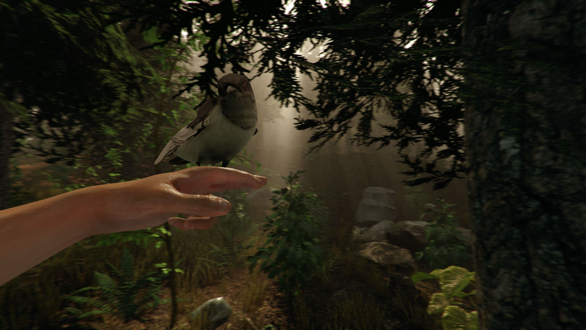 the forest oculus rift survival horror game launches may 22 vr