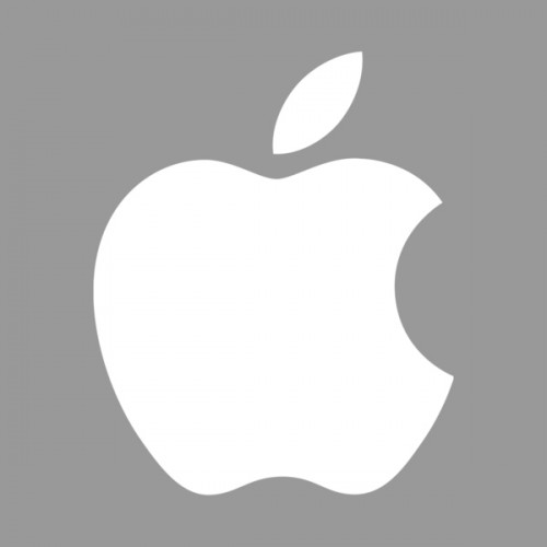Apple Logo Grey